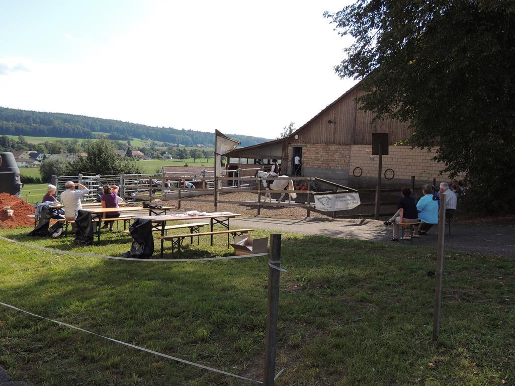 Pferdehof-Sonneschyn Unser Hof