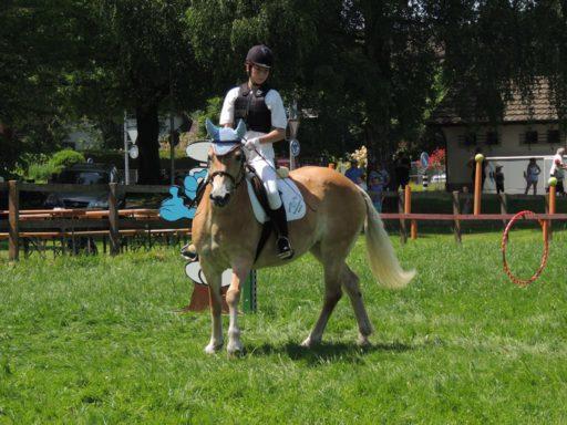 Gymkhana Langenthal (1) 2014