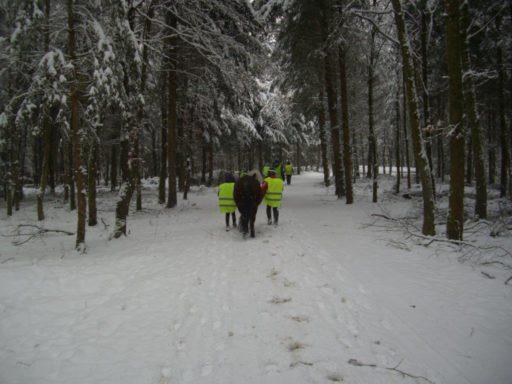 Winterausflüge 2013