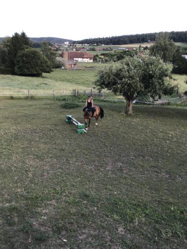 Springen Noemie & Rahel 2017